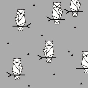 Owls - grey woodland forest autumn || by sunny afternoon