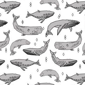 whales // whale fabric grey by andrea lauren