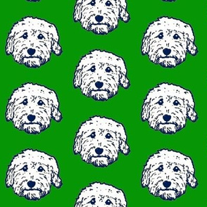 Goldendoodles - adorable doodle dogs in green