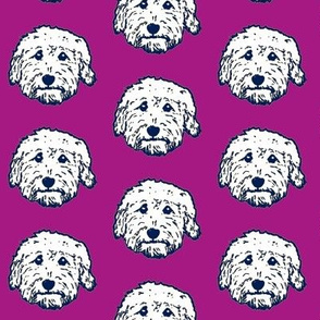 Goldendoodle - dorable in purple