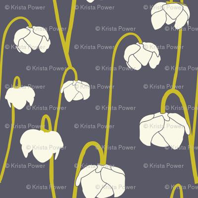 pitcherplantpurple