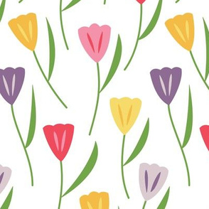 Tulips Multicolored (Spring)