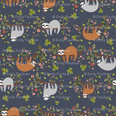 Jungle Animals : SLOTHS!