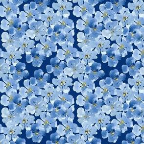 Little Blue Flowers Pattern