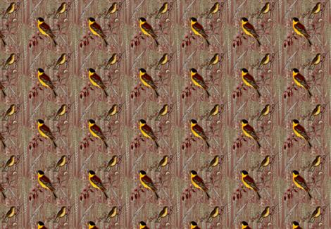 Wheat Birds fabric by sherrileeder on Spoonflower - custom fabric