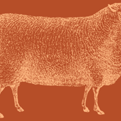 Be A Lamb-Dove