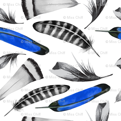 16-05a Feathers Blue Black Watercolor_Miss Chiff Designs