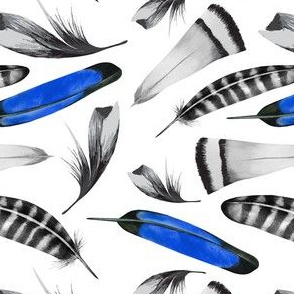 Feathers Blue Black Watercolor_Miss Chiff Designs