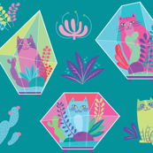 terrarium cats in teal