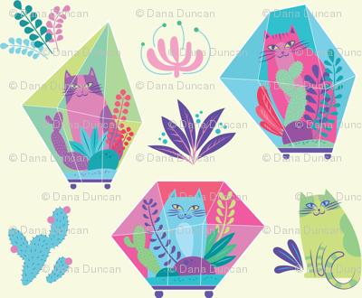 terrarium cats