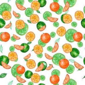 Watercolor seamless pattern on white background. Lime, mandarin, orange