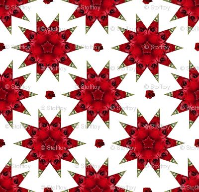 mandala with roses