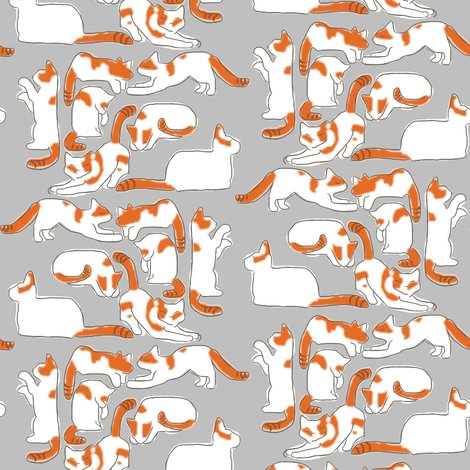 Rorange_and_white_cats_on_gray_shop_preview