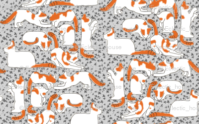 Orange and White Cats on Gray Leaves