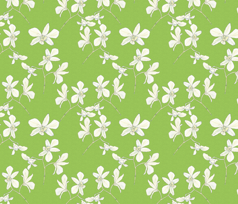 white orchids on spring green fabric by anne_renata on Spoonflower - custom fabric