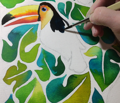 Toucan_comment_755408_thumb