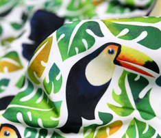 Toucan_comment_755833_thumb