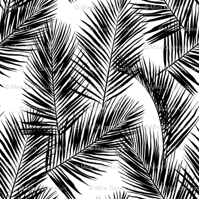 Palm Leaves Black On White Small Silhuettes Tropical