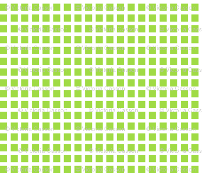 Lime and White Squares Large