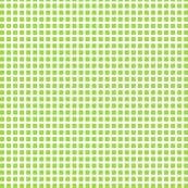 Lime and White Squares Small