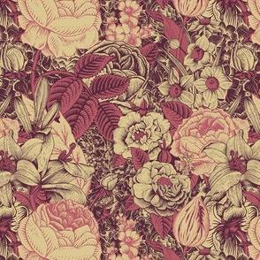 Claret and dark pink flowers