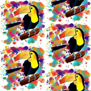 PAINTED TOUCAN and PAINTING SPLASH SPRAY COLORS  WHITE