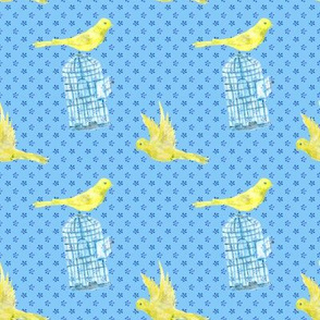 Canary-bird