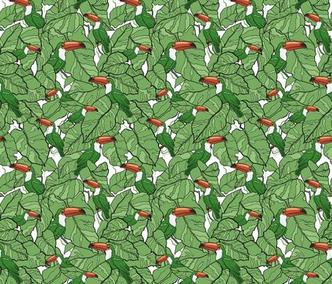 Ramphastidae fabric by torysevas on Spoonflower - custom fabric