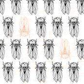 Cicadas_with_peach_test-01_shop_thumb