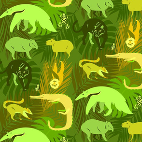 rainforest animals in lime