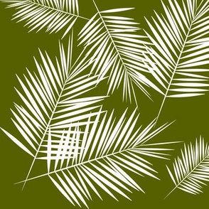 palm leaves - white on olive green tropical plants
