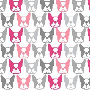 Bostons in a row - Terrier faces in pinks and grays