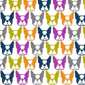 Boston Terrier fabric - Boston Terrier faces in orange, purple, lime green, gray and navy