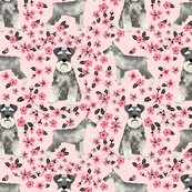 Rschnauzer_cherry_blossom_3_shop_thumb