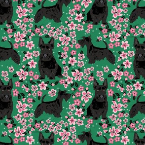 scottie dog dog fabric cherry blossom spring fabric - cute dog design - kelly green