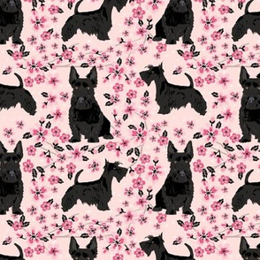 scottie dog dog fabric cherry blossom spring fabric - cute dog design - blossom pink