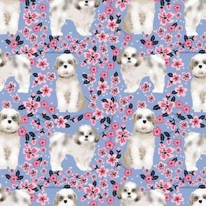 shih tzu dog fabric cherry blossom spring fabric - cute dog design - cerulean