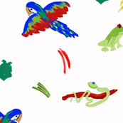 Rain Forest Parrot and Friends