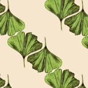 ginkgo_leaves_v3