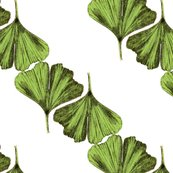 Rrginkgo_leaves_v5_shop_thumb
