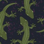 rainforest lizards