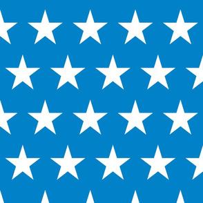 Bright Flag - Large Stars