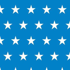 Bright Flag - Medium Stars
