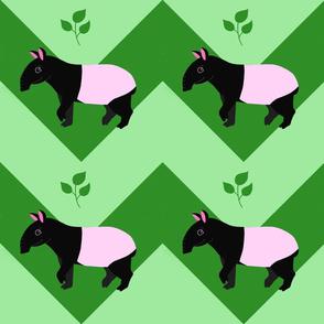 Tapir Chevron