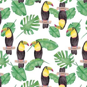 Toucan and leaves // A rainforest Life. Green botanical nature toucan wood forest