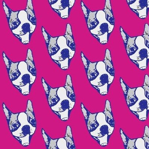 Pop art pup - happy Boston Terrier in pink and blue