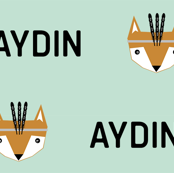 Aydin mint fox head customized