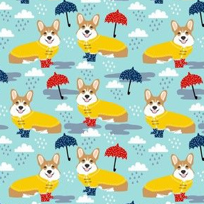 Corgi in the rain - medium scale