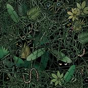 Still undetected animal species in the rainforest_3