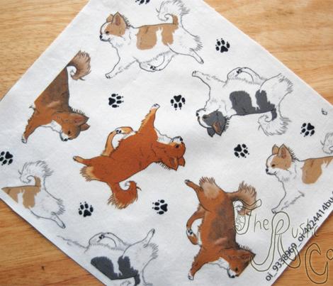 Trotting long coat Chihuahuas and paw prints B - white